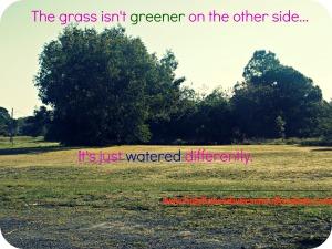 Grassisn'tgreener