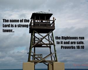 Proverbs1810